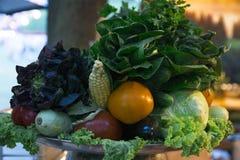 Grupo do vegetal Foto de Stock Royalty Free