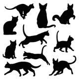 Grupo do vetor da silhueta do gato Fotos de Stock