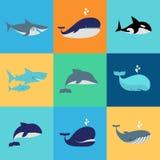 Grupo do vetor de ícones da baleia, do golfinho e do tubarão Fotos de Stock Royalty Free