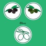 Grupo do vetor de ícones do verde e da azeitona preta no estilo liso Imagens de Stock