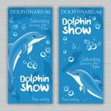 Grupo do vetor de bandeira imprimível do dolphinarium com os golfinhos e texto tirados mão dos desenhos animados Pode ser usado c Fotos de Stock