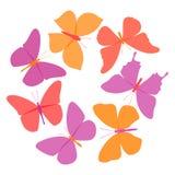 Grupo do vetor de borboletas coloridas no fundo branco Fotografia de Stock Royalty Free