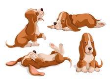 Grupo do vetor de cães de basset tirados mão da cor Isola bonito dos cachorrinhos imagens de stock royalty free