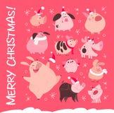 Grupo do vetor de caráteres diferentes lisos do porco do Natal engraçado no chapéu de Santa isolado no fundo nevado cor-de-rosa ilustração do vetor