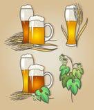Grupo do vetor de cerveja escura e clara Fotos de Stock Royalty Free