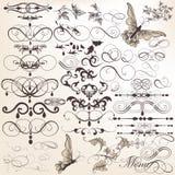 Grupo do vetor de elementos do projeto e de decorações caligráficos da página Fotos de Stock Royalty Free