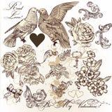 Grupo do vetor de elementos do vintage no tema do amor ilustração do vetor