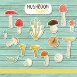 Grupo do vetor de etiquetas coloridas do cogumelo no fundo de madeira azul ilustração stock