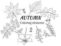 Grupo do vetor de folhas na garatuja para livros para colorir ilustração do vetor