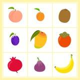 Grupo do vetor de frutos dos desenhos animados isolados no fundo branco ilustração stock