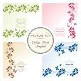 Grupo do vetor de fundos florais com borboletas Foto de Stock