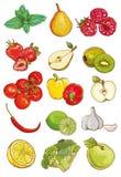 Grupo do vetor de legumes frescos, de frutos e de bagas Imagens de Stock Royalty Free