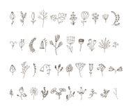 Grupo do vetor de linha tirada 40 mãos flores e Imagem de Stock