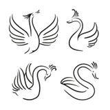 Grupo do vetor de pássaros decorativos Silhueta da cisne ilustração royalty free