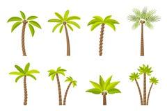 Grupo do vetor de palmeiras simples Fotos de Stock Royalty Free