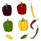 Grupo do vetor de pimentões e de Paprika Peppers dos desenhos animados fotografia de stock royalty free