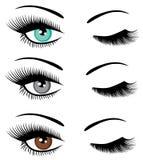 Grupo do vetor de pisc dos olhos ilustração stock