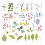 Grupo do vetor de plantas, de flores e de ervas Imagens de Stock Royalty Free
