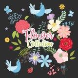 Grupo do vetor de plantas, de flores e de ervas Imagem de Stock