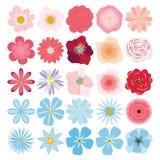 Grupo do vetor de plantas, de flores e de ervas Foto de Stock Royalty Free