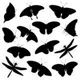 Grupo do vetor de silhuetas tropicais isoladas das borboletas e das libélulas na cor preta no fundo branco ilustração royalty free