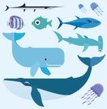 Grupo do vetor do mar Fotografia de Stock