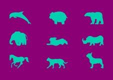 Grupo do vetor dos animais domésticos e selvagens ilustração royalty free