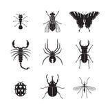 Grupo do volume 1 dos insetos do vetor Foto de Stock