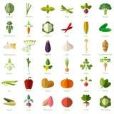 Grupo dos ícones lisos vegetais Fotografia de Stock Royalty Free