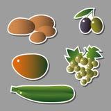Grupo dos ícones vegetais ilustração do vetor