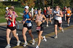 Grupo dos cidadãos da maratona Fotos de Stock Royalty Free