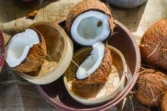 Grupo dos cocos na bacia fotografia de stock royalty free