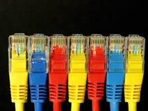 Grupo dos conectores rj45 da cor Imagens de Stock