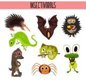 Grupo dos desenhos animados de insetívoros bonitos dos animais que vivem em partes diferentes das florestas do mundo e da selva t Imagens de Stock