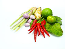 Grupo dos ingredientes de Tomyum (alimento tailandês) Fotografia de Stock