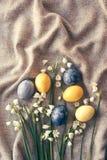 Grupo dos snowdrops e dos ovos da páscoa imagens de stock