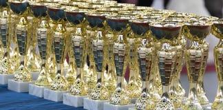 Grupo dos troféus Imagens de Stock