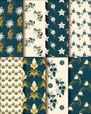 Grupo elegante de testes padrões de flor ilustração royalty free