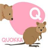 Grupo engraçado da letra do alfabeto do vetor dos animais dos desenhos animados Imagens de Stock Royalty Free
