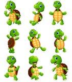 Grupo feliz da coleção dos desenhos animados da tartaruga Fotos de Stock