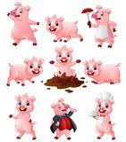 Grupo feliz da coleção dos desenhos animados do porco Imagens de Stock Royalty Free