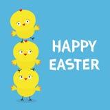 Grupo feliz da família da pirâmide da galinha da Páscoa Animal de exploração agrícola Caráter engraçado dos desenhos animados bon Imagens de Stock