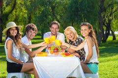 Grupo feliz de adolescentes que aumentan una tostada Foto de archivo libre de regalías