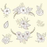 Grupo floral do vetor Coleção gráfica com folhas e flores, elementos de tiragem Fotos de Stock