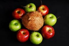 Grupo fresco colorido de frutos imagem de stock royalty free