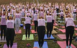 Grupo grande de adultos que asisten a una clase de la yoga afuera en parque Fotografía de archivo