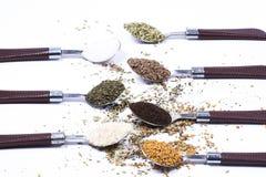 Grupo grande de especiarias e de ervas indianas imagem de stock