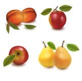 Grupo grande de fruta. Imagen de archivo