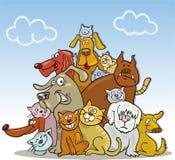 Grupo grande de gatos e de cães Imagem de Stock