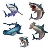 Grupo grande de ilustração realística isolada tubarões ilustração do vetor